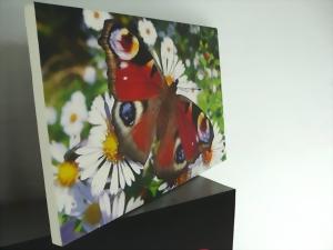 fotoleinwand g nstig designs66. Black Bedroom Furniture Sets. Home Design Ideas
